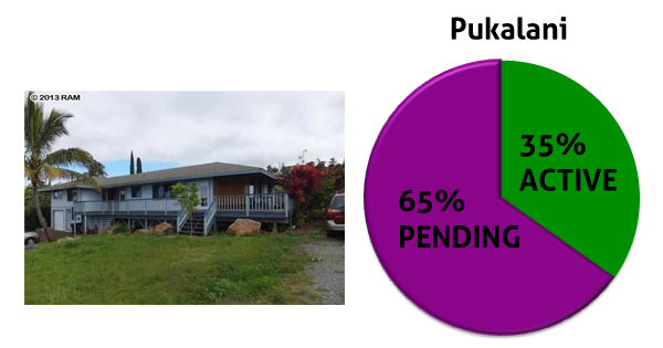 chart showing the pending home sales in pukalani